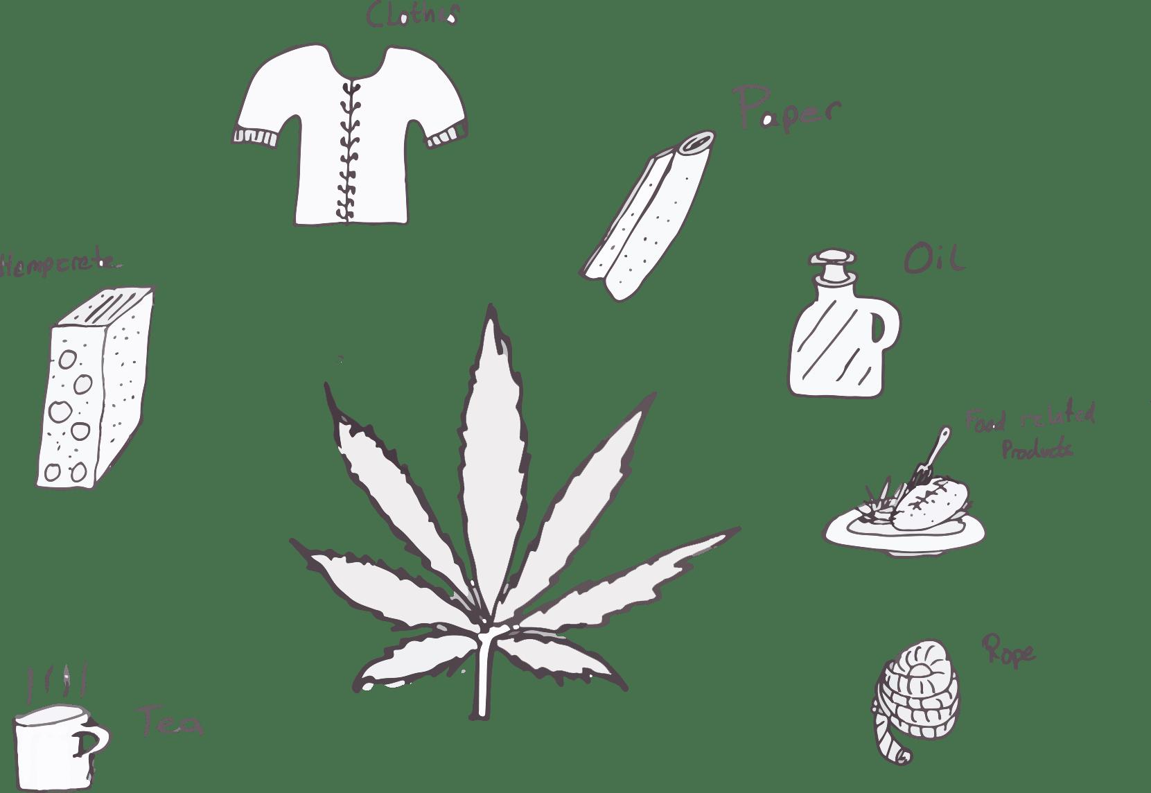 Some benefits of hemp.